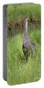 One Sandhill In Marsh Portable Battery Charger