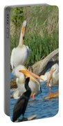 One Sassy Pelican And Friends, West Central Minnesota Portable Battery Charger