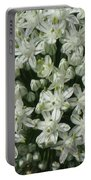 Onion In Bloom Portable Battery Charger
