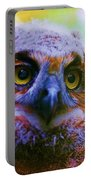 Opalescent Owl Portable Battery Charger
