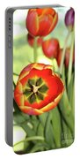 Open Tulip Portable Battery Charger