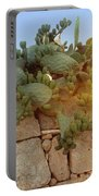 Opuntia Cactus In The Sunset Portable Battery Charger
