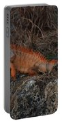 Oranage Iguana Portable Battery Charger