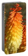 Orange And Gold Flower  Portable Battery Charger