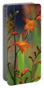 Orange And Green Portable Battery Charger