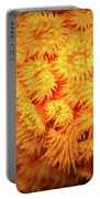 Orange Anemones Portable Battery Charger