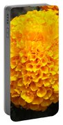 Orange Bloom Portable Battery Charger
