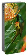 Orange-breasted Sunbird Feeding On Protea Blossom Portable Battery Charger