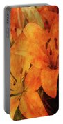 Orange Cluster 9225 Idp_2 Portable Battery Charger