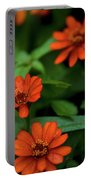 Orange Daisey's Portable Battery Charger