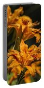 Orange Daylily Portable Battery Charger