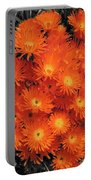 Orange Portable Battery Charger