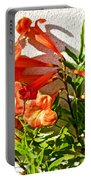 Orange Trumpet Flowers At Pilgrim Place In Claremont-california  Portable Battery Charger