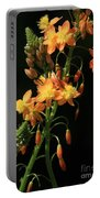 Orange Flowers On Black Portable Battery Charger