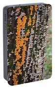 Orange Fungus Portable Battery Charger