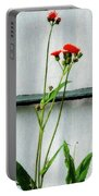 Orange Hawkweed Over Gray Muslin Portable Battery Charger