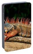 Orange Iguana Close Up Portable Battery Charger