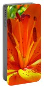 Orange Lily Flower Art Print Summer Lily Garden Baslee Troutman Portable Battery Charger