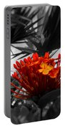 Orange Magnificence  Portable Battery Charger