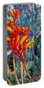Yellow-orange Kangaroo Paws At Pilgrim Place In Claremont-california- Portable Battery Charger