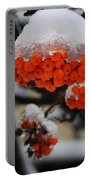 Orange Mountain Ash Berries Portable Battery Charger