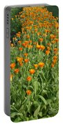 Orange Parade Portable Battery Charger