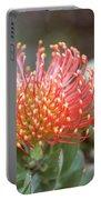 Orange Pincushion Protea Portable Battery Charger
