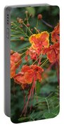 Orange Poinciana Tree Portable Battery Charger