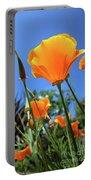 Orange Poppy Blue Sky Portable Battery Charger