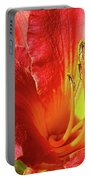 Orange-red Day Lily Portable Battery Charger