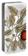 Orange Tree, 1735 Portable Battery Charger