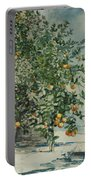 Orange Trees And Gate Portable Battery Charger