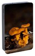 Orange Woodland Mushrooms Portable Battery Charger
