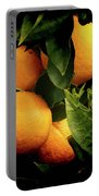 Oranges Portable Battery Charger
