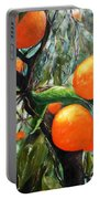Oranges Extract Portable Battery Charger
