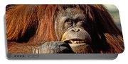 Orangutan  Portable Battery Charger