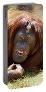 Orangutan In The Grass Portable Battery Charger by Garry Gay