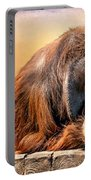 Orangutan Portable Battery Charger