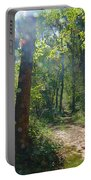 Orbs In The Woods Portable Battery Charger by Beth Sawickie