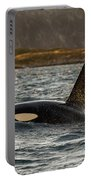 Orca #3 Portable Battery Charger