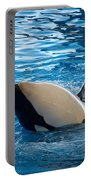 Orca 3 Portable Battery Charger