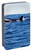 Orca Portable Battery Charger