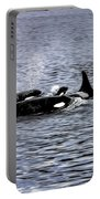 Orcas, The Killer Whales Portable Battery Charger