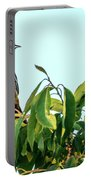 Orchard Oriole Songbird Perched On A Bush Portable Battery Charger