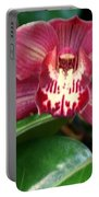 Orchid 10 Portable Battery Charger