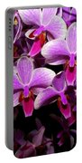 Orchid 12 Portable Battery Charger
