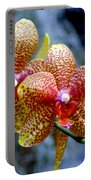 Orchid 17 Portable Battery Charger