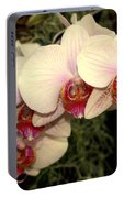 Orchid 19 Portable Battery Charger
