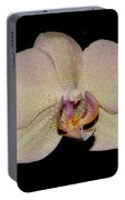 Orchid 2016 2 Portable Battery Charger