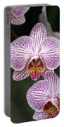Orchid 22 Portable Battery Charger